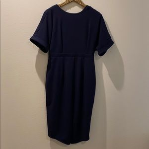 Petite Navy Blue Dress